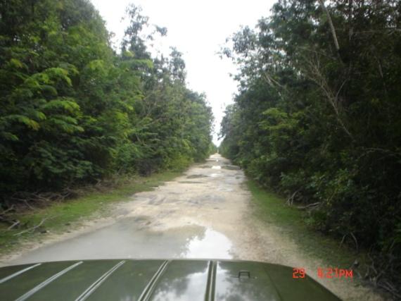 2.- Un intrincado camino lleva al  Complejo